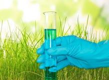 Hand i hållande provrör för handske på abstrakt begreppgräsplan Royaltyfri Fotografi