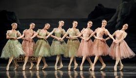 Hand i hand balettflickor Fotografering för Bildbyråer