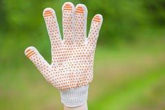 Hand i handske- eller trädgårdtumvantet som räknar på fingrar, oklar bakgrund för gräsplan, fem Arkivfoto