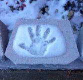 Hand i snö Arkivfoton