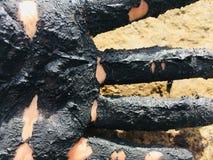 Hand i svart lera royaltyfria foton