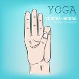 Hand i yogamudra Varuna-Mudra Arkivfoto