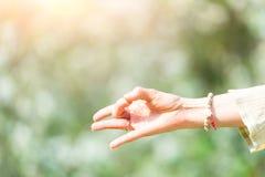 Hand i yogaposition i natur Arkivbild