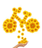 Hand idea with sunflower bicycle image. Royalty Free Stock Images