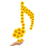 Hand idea with sunflower music notes image. Royalty Free Stock Photo