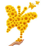 Hand idea with sunflowers butterfly image. Stock Photography