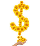 Hand idea with sunflowers money sign image. Stock Images