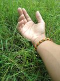 Hand im Gras Stockfotografie