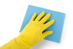 Hand im Gummihandschuh mit dem blauen Schwamm lokalisiert auf Weiß Stockbilder