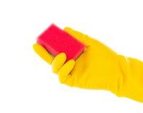 Hand im Gummihandschuh mit rotem Reinigungsschwamm stockbilder