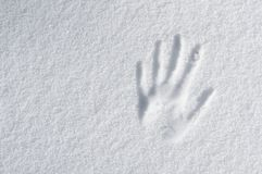 Hand impression. In fresh snow stock photography