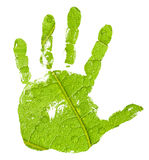 Hand imprint on green leaf background. Conceptual hand imprint on green leaf background royalty free stock photography