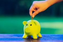Hand inserting a coin into green piggy bank - ecology savings co. Ncept Stock Photo