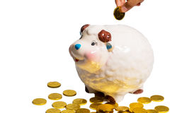 Hand inserting coin into piggy bank. Isolated on the white background Royalty Free Stock Image