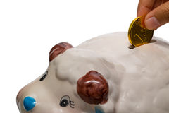 Hand inserting coin into piggy bank. Isolated on the white background Royalty Free Stock Photography