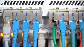 Hand inserts the cable into internet hub stock video footage