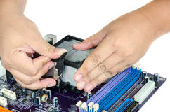 Hand installing CPU and Heat Sink Stock Photos