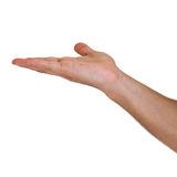 Hand Isolated on White Stock Photos