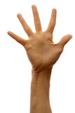 Hand isolated on white background. The hand of man shows five fingers on a white background stock photos