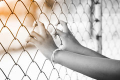 Hand in jail. Black and white. Stock Images
