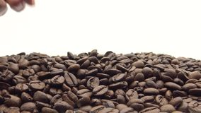 Hand 4k nehmen die Röstkaffee-Bohnen Bestandteil für Kaffee stock video