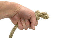 Hand keeps rope with node. On white background Royalty Free Stock Photo