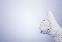 Hand in kitchen glove Stock Images