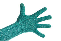 Hand in knitted green gloves isolated Royalty Free Stock Image