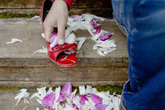 Hand With Ladies Red Shoe. Man sitting on the wooden stairs holding a red shoe scattered with wedding petals. Cropped closeup photo Royalty Free Stock Photo