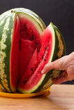 Hand with a large piece of watermelon Stock Photos