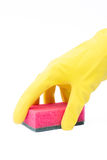 Hand in latex glove with scourer. Busy cleaning Stock Image