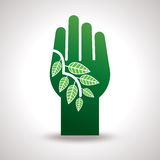 Hand and Leaf. Eco  Stock Photo