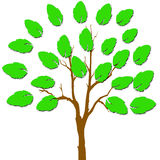 A hand with leaves. A hand with green leaves stock illustration