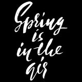 Hand lettered inspirational quote. Spring is in the air. Hand brushed ink lettering. Modern brush calligraphy. Vector Stock Photos
