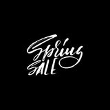 Hand lettered style spring design on a white background. Spring Sale hand drawn calligraphy letters. Vector illustration Stock Image