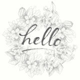 Hand lettering phrase on floral back. Vector hand drawing word Hello. Detailed flower wreath backdrop. Isolated, vintage style Stock Photography