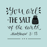 Hand lettering You are the salt of the earth. Royalty Free Stock Images