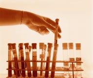 Hand lifting test tube stock photo