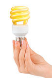 Hand with lighting lamp Stock Image