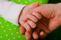 Hand of a little baby in mother's Stock Photos
