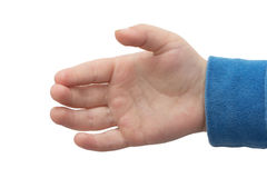 Hand of a little boy Royalty Free Stock Photo