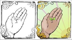 hand little växt Fotografering för Bildbyråer