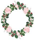 Hand-målad rosa roskrans för vattenfärg Royaltyfri Bild