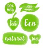 Hand målad strikt vegetarianetikettdesign Vattenfärglogomallen, växt baserade matlogosymbolen utmärkt för att använda vid ecoen,  Royaltyfri Foto
