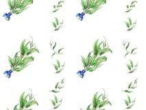 Hand målad vattenfärgsidamodell royaltyfri illustrationer