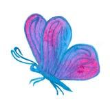 Hand målad verklig vattenfärgrosa färg- och blåttfjäril på en vit Arkivbilder