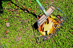 Hand Made African Leaf Rake and Leaves on Grass Stock Photos