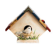 Hand made birdhouse with bird Royalty Free Stock Images