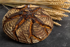 Hand made bread loaf with wheat ears Stock Images