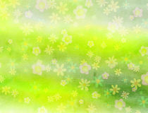 Watercolour Field of Flowers background Paper Royalty Free Stock Photo